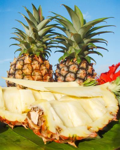 西表島ミトレア農園・パイナップル